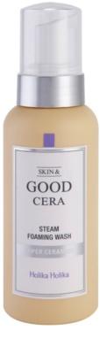 Holika Holika Skin & Good Cera mousse de limpeza para pele seca a sensível
