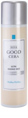 Holika Holika Skin & Good Cera meglica za obraz za intenzivno hidracijo