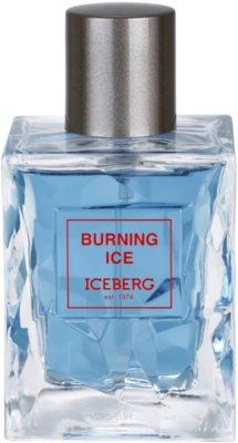 Iceberg Burning Ice toaletna voda za moške 2