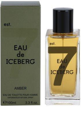 Iceberg Eau de Iceberg Amber Eau de Toilette pentru barbati