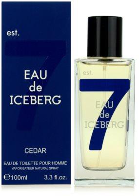 Iceberg Eau de Iceberg Cedar Eau de Toilette for Men