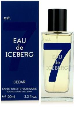 Iceberg Eau de Iceberg Cedar woda toaletowa dla mężczyzn