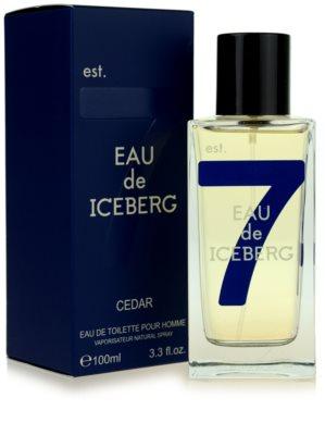 Iceberg Eau de Iceberg Cedar woda toaletowa dla mężczyzn 1