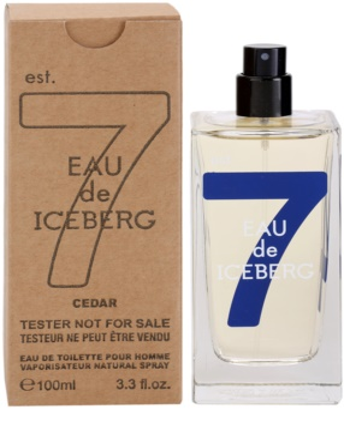 Iceberg Eau de Iceberg Cedar toaletní voda tester pro muže 1