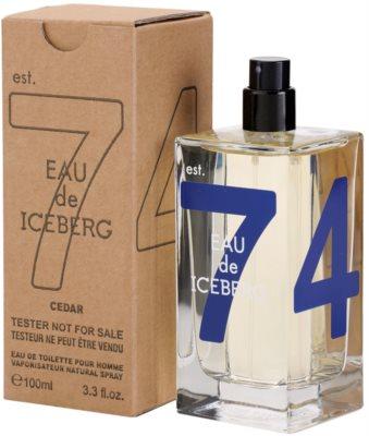 Iceberg Eau de Iceberg Cedar toaletní voda tester pro muže 2