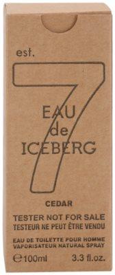 Iceberg Eau de Iceberg Cedar toaletní voda tester pro muže 3