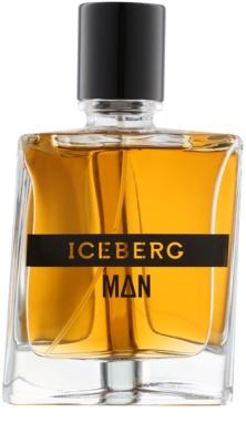 Iceberg Man туалетна вода для чоловіків