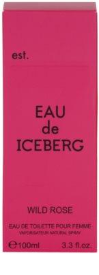 Iceberg Eau de Iceberg Wild Rose toaletna voda za ženske 4