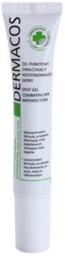 Ideepharm Dermacos Combination Oily Acne Skin traktament local impotriva acneei