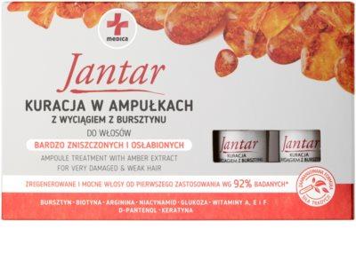 Ideepharm Medica Jantar obnovující kúra pro poškozené a křehké vlasy 2