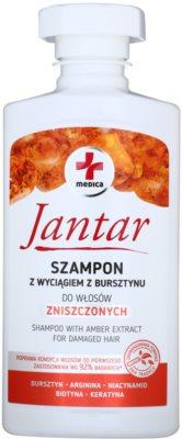 Ideepharm Medica Jantar Sampon pentru păr deteriorat