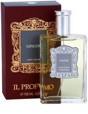 IL PROFVMO Ginger Eau de Parfum unissexo 1