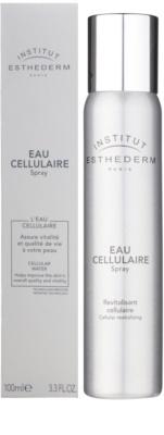 Institut Esthederm Cellular Water Sprühnebel für das Gesicht mit revitalisierender Wirkung 2