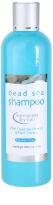 Jericho Hair Care šampon za normalne do suhe lase