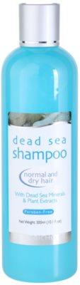 Jericho Hair Care szampon do włosów normalnych i suchych