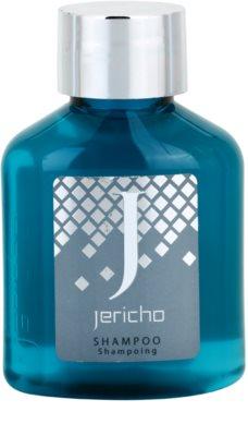 Jericho Collection Shampoo шампунь для всіх типів волосся
