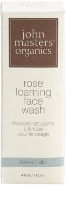 John Masters Organics Normal to Dry Skin очищаюча пінка для шкіри обличчя 1
