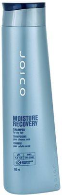 Joico Moisture Recovery champú para cabello seco