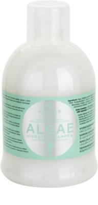Kallos KJMN champô hidratante  com extrato de algas e azeite