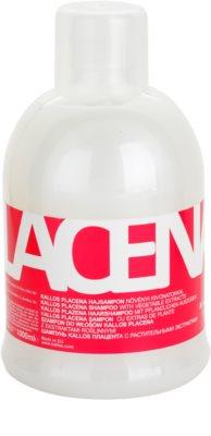 Kallos Placenta champô para cabelo seco a danificado