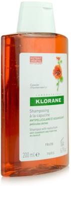 Klorane Capucine champú contra la caspa seca 5