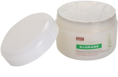 Klorane Crambe dAbyssinie máscara nutritiva para cabelo ondulado 1