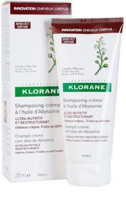Klorane Crambe dAbyssinie obnovitveni šampon za valovite lase 1