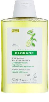 Klorane Cédrat szampon do włosów normalnych