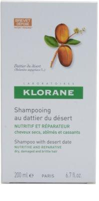 Klorane Dattier шампоан  за крехка и стресирана коса 2