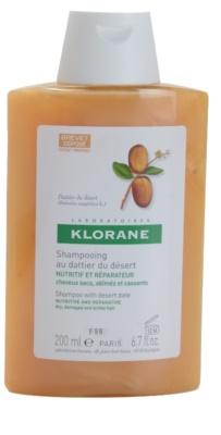 Klorane Dattier champú para cabello castigado y quebradizo