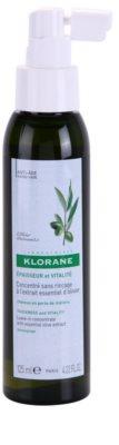 Klorane Olive Extract koncentrat brez spiranja v pršilu za oslabljene lase