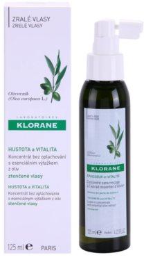 Klorane Olive Extract concentrado en spray sin aclarado para cabello debilitado 1