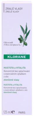 Klorane Olive Extract concentrado en spray sin aclarado para cabello debilitado 2