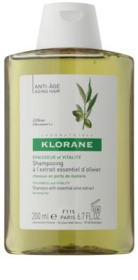 Klorane Olive Extract šampon z esencialnim izvlečkom oliv
