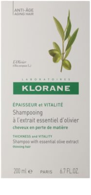 Klorane Olive Extract šampon z esencialnim izvlečkom oliv 2