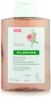 Klorane Pivoine de Chine champô apaziguador para couro cabeludo sensíve