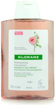 Klorane Pivoine de Chine champú de efecto calmante para cuero cabelludo sensible