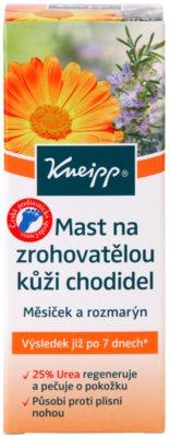 Kneipp Care unguent pentru picioare batatorite 2
