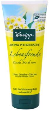 Kneipp Wash posilující sprchový gel