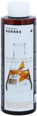 Korres Hair Sunflower and Mountain tea Shampoo für gefärbtes Haar