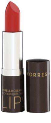 Korres Decorative Care Morello barra de labios hidratante con aceite de huesos de cereza amarga 1