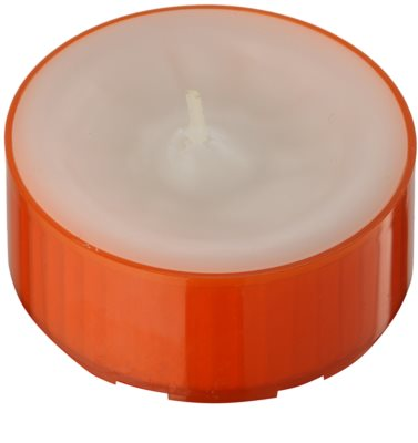 Kringle Candle Pumpkin Sage świeczka typu tealight 1