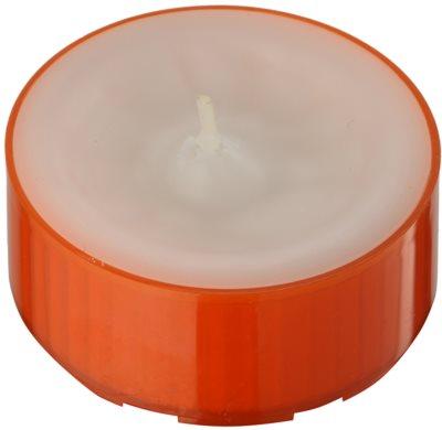 Kringle Candle Pumpkin Sage Teelicht 1