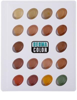 Kryolan Dermacolor Camouflage System mini paleta korektorów 2
