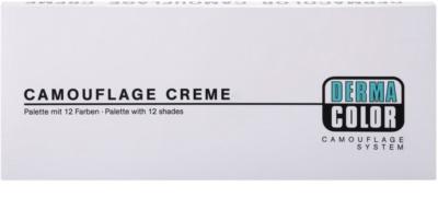 Kryolan Dermacolor Camouflage System Palette mit 12 Korrektoren 3