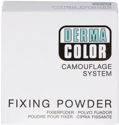Kryolan Dermacolor Camouflage System voděodolný fixační pudr 3