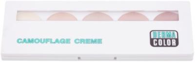 Kryolan Dermacolor Camouflage System Palette mit Korrekturcreme mit starker Deckkraft in 5 Farben 1