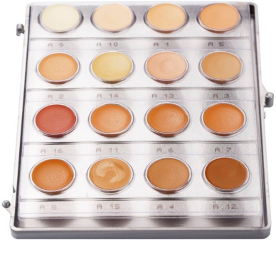 Kryolan Dermacolor Light paleta 16 odtenkov kremastega tekočega pudra
