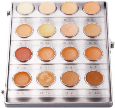 Kryolan Dermacolor Light paleta de 16 tonos de maquillaje en crema