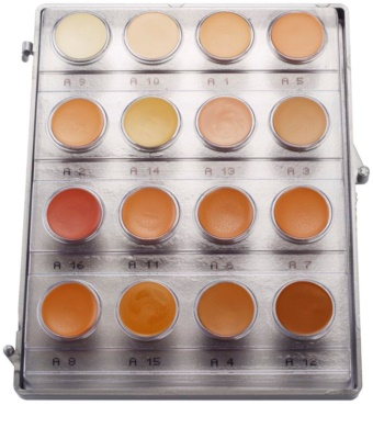 Kryolan Dermacolor Light 16 színű krémes alapozó paletta 1